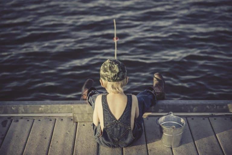 Jesienny połów ryb a przepisy prawne