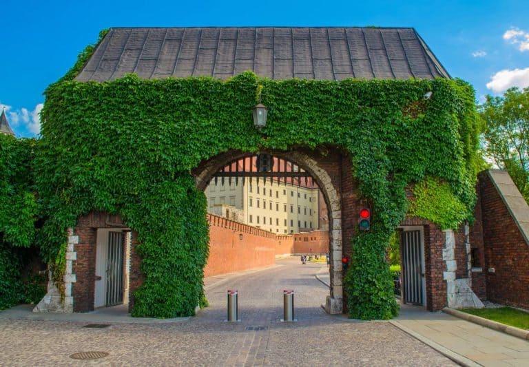 Wybierasz się na urlop do Krakowa, zobacz co warto zwiedzić