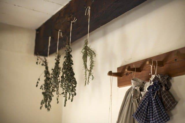 Czy ziołolecznictwo to mit? Naturalne zioła