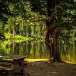 Wypoczynek nad jeziorem – co ze sobą zabrać i o czym pamiętać planując wyjazd?